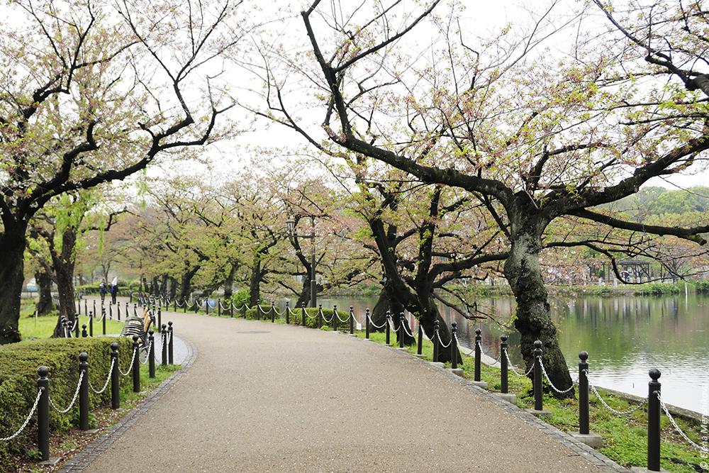 Парк Уэно (上野恩賜公園)