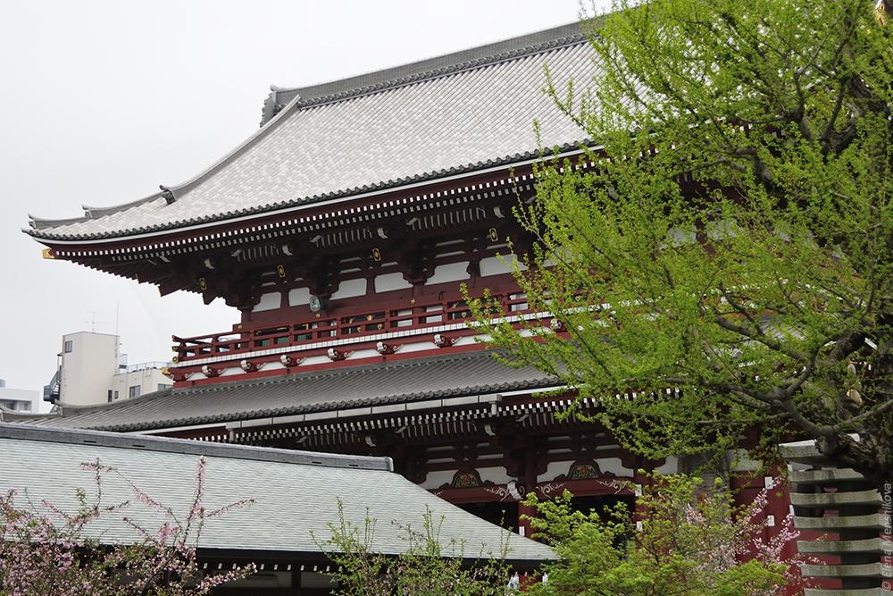 Буддийский храм Сэнсо-дзи (浅草寺)