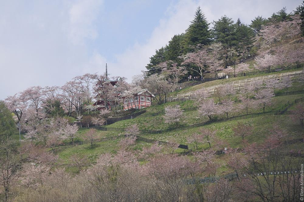 Фудзи Кавагучи пагода Тюрейто