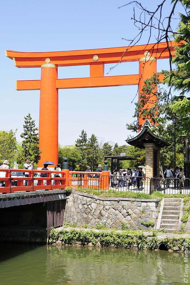 Киото Канал Окадзаки (岡崎疏水の桜)